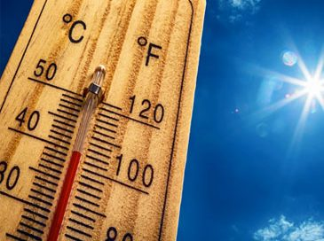 Keep Cool with our Summer Fleet Maintenance Tips